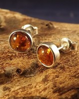 Stunning Amber Stud Earrings