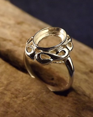 Silver Ring Mount For 9x13