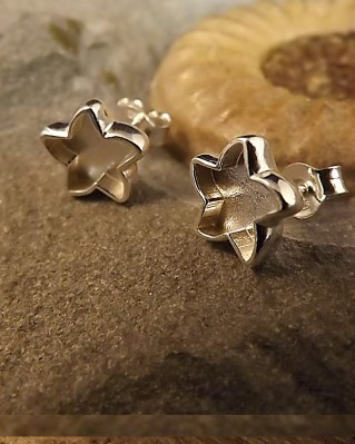 Solid Back Star Stud Earrings Suitable For Resin
